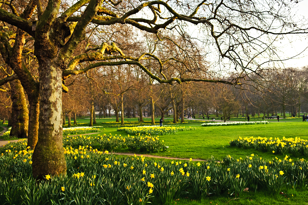 spring in the beautiful city of London