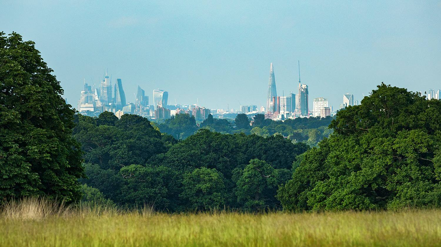 A Panorama of London viewed from Richmond Park
